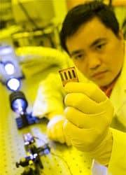 Nanotrees Capture More Sunlight For Cheap Solar Cells