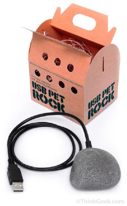 Pet Rock: Updated, But Still Useless