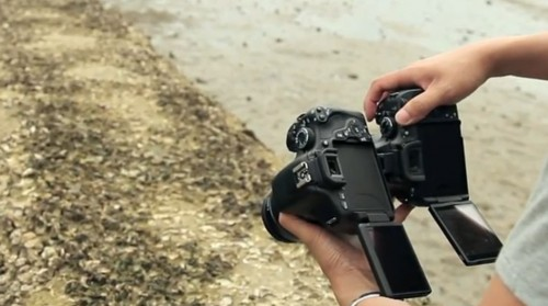 Nikon D5100 vs. Canon Rebel T3i DSLR Shootout