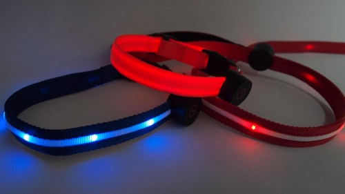 Updated Nite Leash and Nite Collar 2.0 Bring Several Improvements