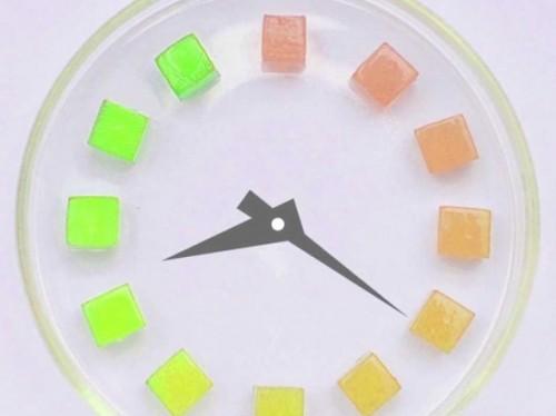 Smart Tags Help You Avoid Unpleasant Food Surprises