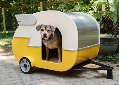 indoor-camper-doghouse-1050x749
