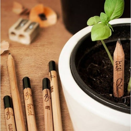 Pencil Too Short? Get Sprout, the Pencil That Grows