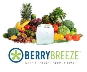 BerryBreeze: Keep Fresh Fruit Fresh Longer