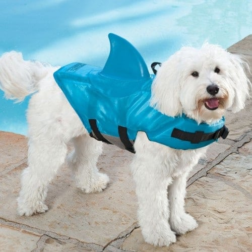 shark-dog-life-jacket