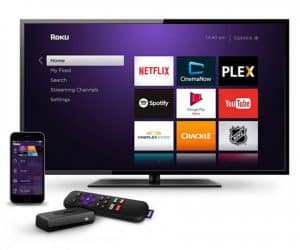 Roku Users Streamed One Billion Hours in One Month