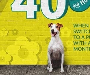 The $40 Fido Plan for 4GB Is Back (with Canada-Wide Calling)